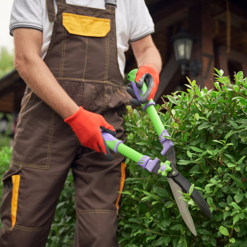 serviços de jardinagem e paisagismo
