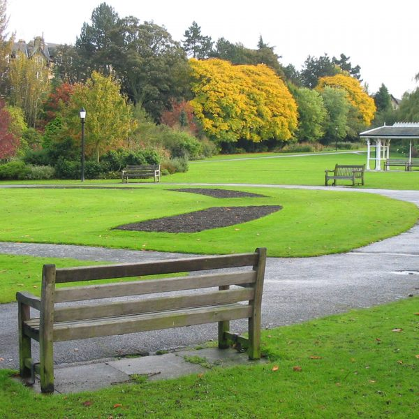 area verde urbana jardinagem